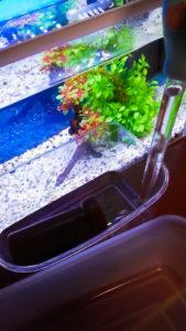 水合わせ用容器の水取得