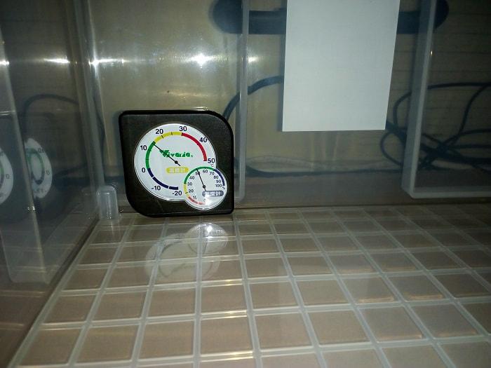実験開始60分後の温度